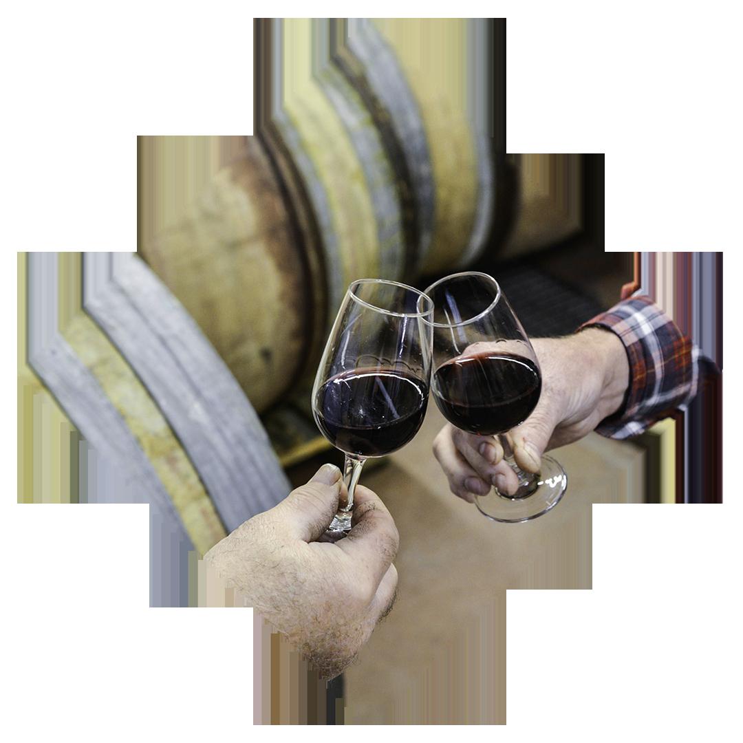 Mas de Bagnols - Dégustation de vin rouge au caveau du domaine